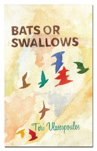 Bats or Swallows cover - click to view full size