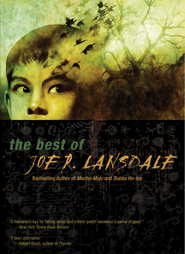 The Best of Joe R. Lansdale cover - click to view full size