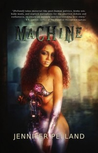 Machine cover - click to view full size