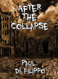 After the Collapse cover - click to view full size