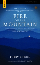 Fire on the Mountain cover - click to view full size