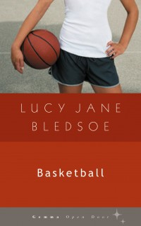 Basketball cover - click to view full size