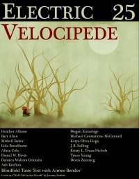 Electric Velocipede issue 25 cover - click to view full size