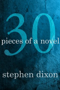 30 Pieces of a Novel cover - click to view full size