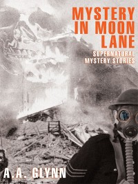 Mystery in Moon Lane cover - click to view full size