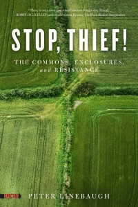 Stop, Thief!: The Commons, Enclosures, and Resistance cover - click to view full size