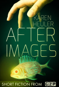 After Images cover - click to view full size
