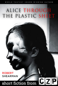 Alice Through the Plastic Sheet cover - click to view full size