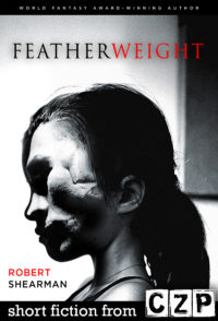 Featherweight cover - click to view full size