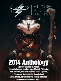 Flash Fiction Online 2014 Anthology cover - click to view full size