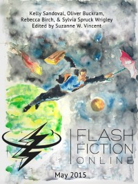 Flash Fiction Online Issue #20 May 2015 cover - click to view full size