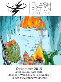 Flash Fiction Online Issue #27 December 2015 cover - click to view full size