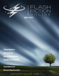 Flash Fiction Online Issue #44 May 2017 cover - click to view full size