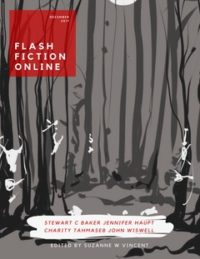 Flash Fiction Online Issue #51 December 2017 cover - click to view full size