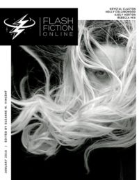 Flash Fiction Online Issue #52 January 2018 cover - click to view full size