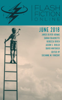 Flash Fiction Online Issue #57 June 2018 cover - click to view full size