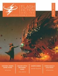 Flash Fiction Online Issue #80 June 2020 cover - click to view full size
