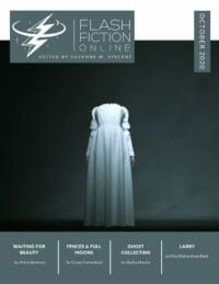 Flash Fiction Online Issue #84 October 2020 cover - click to view full size