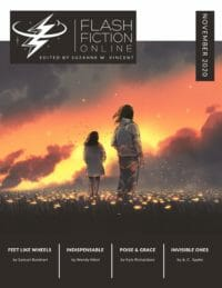 Flash Fiction Online Issue #85 November 2020 cover - click to view full size