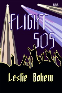 Flight 505: a novella cover - click to view full size