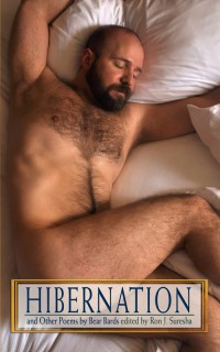 Hibernation and Other Poems by Bear Bards cover - click to view full size
