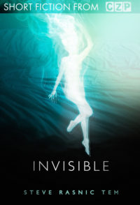 Invisible cover - click to view full size