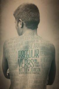 Irregular Verbs cover - click to view full size