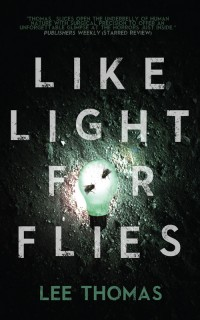 Like Light for Flies cover - click to view full size