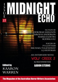 Midnight Echo Issue 11 cover - click to view full size