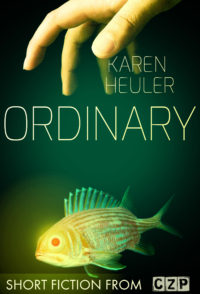 Ordinary cover - click to view full size
