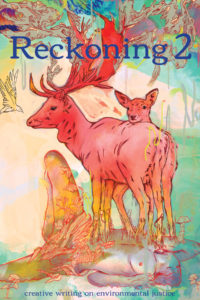 Reckoning 2 cover - click to view full size
