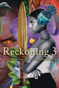 Reckoning 3 cover - click to view full size