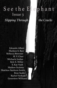 See the Elephant, Issue 3: Slipping Through the Cracks cover - click to view full size