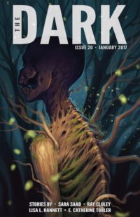 The Dark Issue 20 cover - click to view full size
