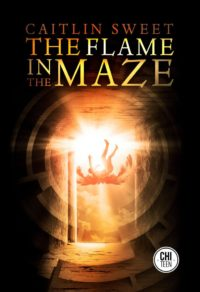 The Flame in the Maze cover - click to view full size
