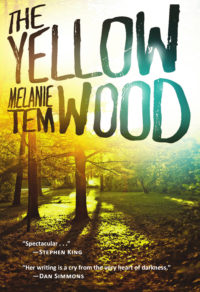 The Yellow Wood cover - click to view full size