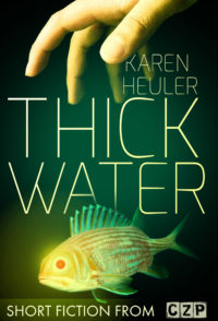 Thick Water cover - click to view full size